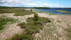 2.5 kilometres of undeveloped Lake Ontario shoreline and coastal wetlands will now be protected forever